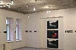 Gallery Kairė-Dešinė